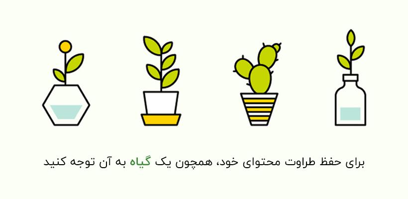 برای حفظ طراوت محتوای خود، همچون یک گیاه به آن توجه کنید